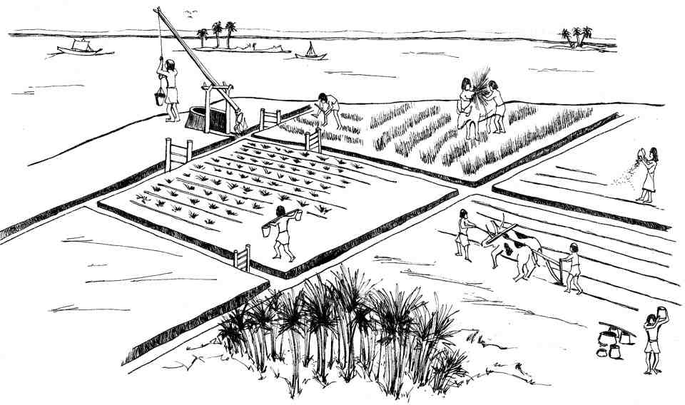 ancient rome farming clothing sports and government Roman government ancient rome experienced three different types of government: monarchy  as rome expanded, its military leaders began to have more power,.